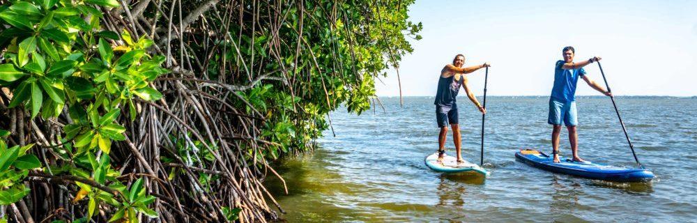 SUP Lagoon Tour auf dem Roadtrip